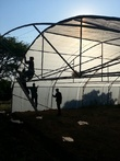 Greenhouse Building & maintanance