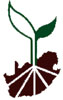 Seedling%20Growers%20Assosciation%20of%20south%20Africa